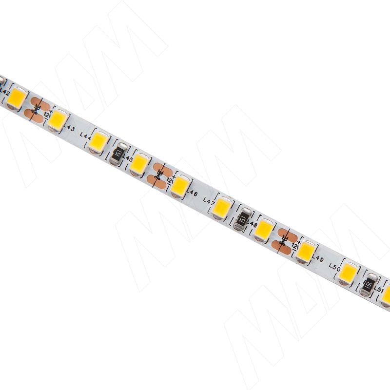 Лента светодиодная 2835/120, 12V, основание 5 мм, 5 м, холодный белый 6000К, IP20, 9.6W/1м фото товара 2 - LS12-2835CW20-9.6C8